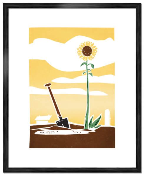 Solros-Poster-©-Joakim-Jalin